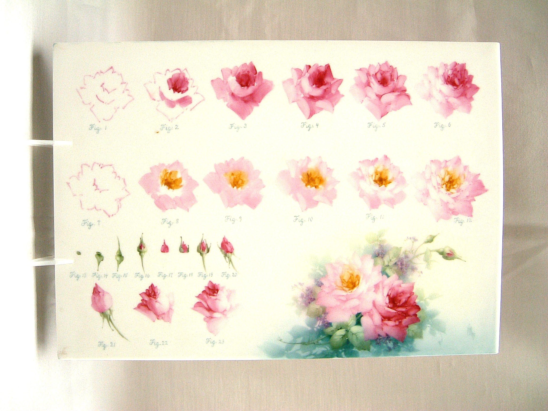 1000 images about painting tutorials and patterns on for How to paint a rose step by step